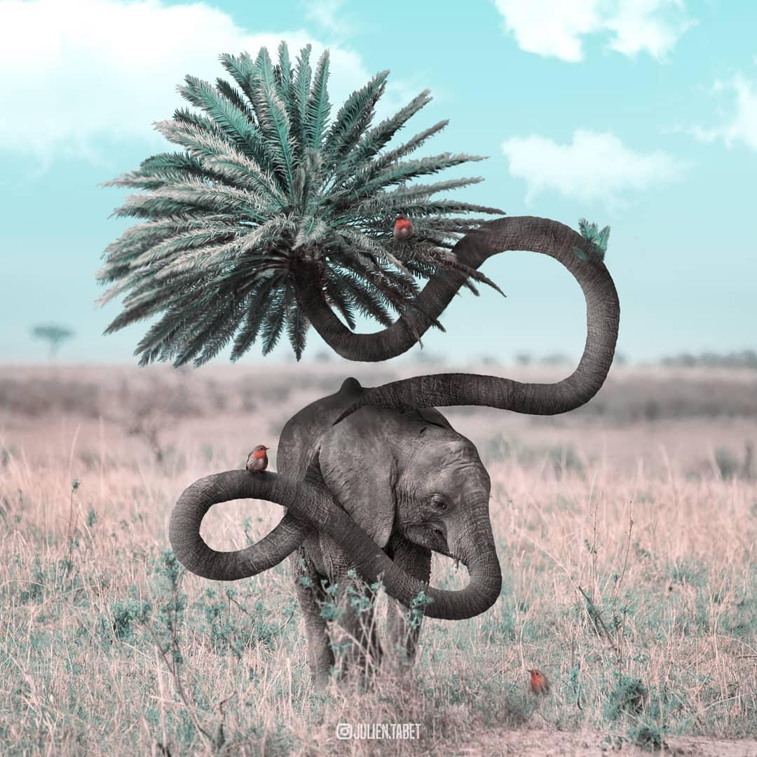 Цифровой художник из Франции изображает сюрреалистичных животных, которые будто пришли из наших снов 89