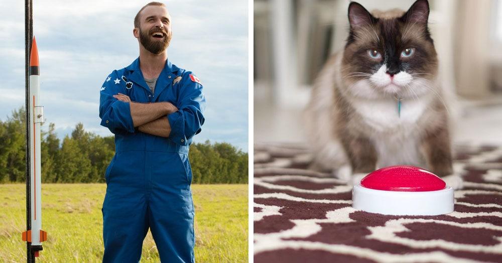 Видеоблогер думал, что научил кота запускать ракету. Но в последний момент пушистый показал, кто тут главный