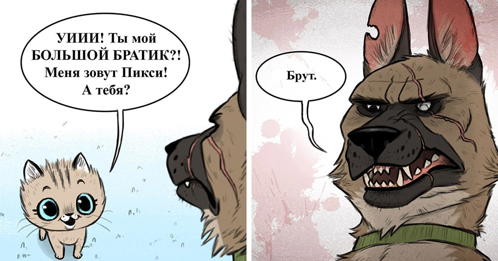 8 комиксов о приключениях Пикси и Брута — самой контрастной и очаровательной нарисованной парочки