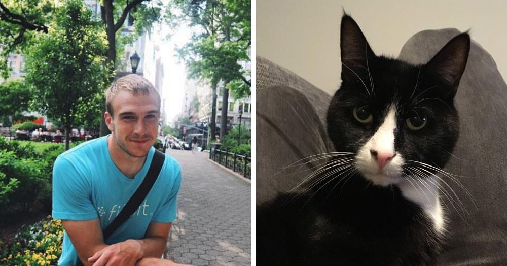 Парень проследил за своим котом и сделал график его мяукания. И многие коты следуют этому расписанию