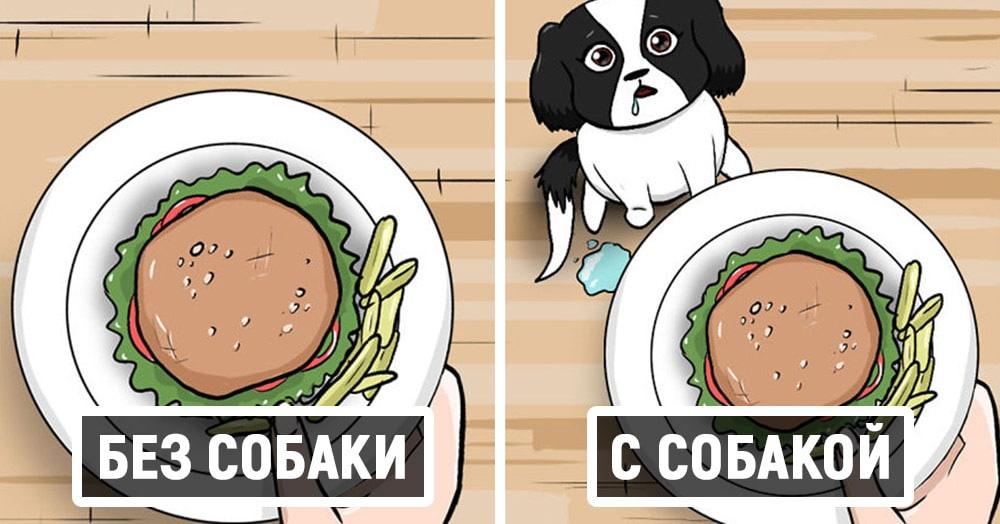 17 комиксов о жизни собачки Руби, которые развеселят каждого, кто хотя бы день прожил с собакой