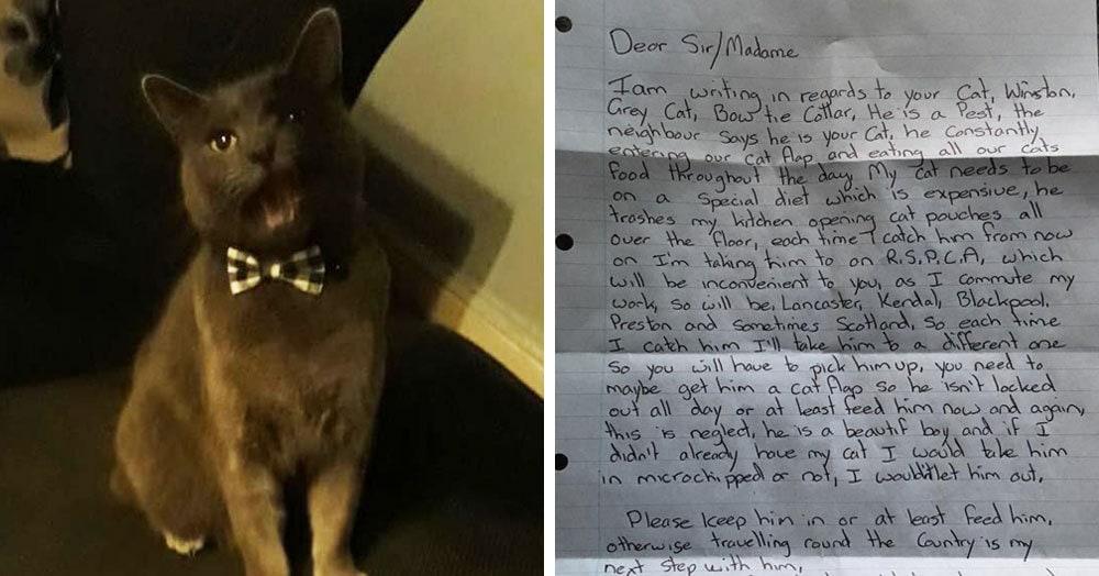 Британец получил письмо, в котором соседка грозится похитить его кота. А всё потому что он много ест