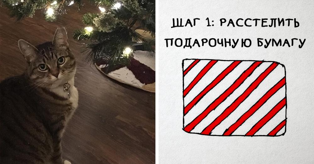 Как завернуть подарки, если у вас есть кот? Пошаговая инструкция от американского художника