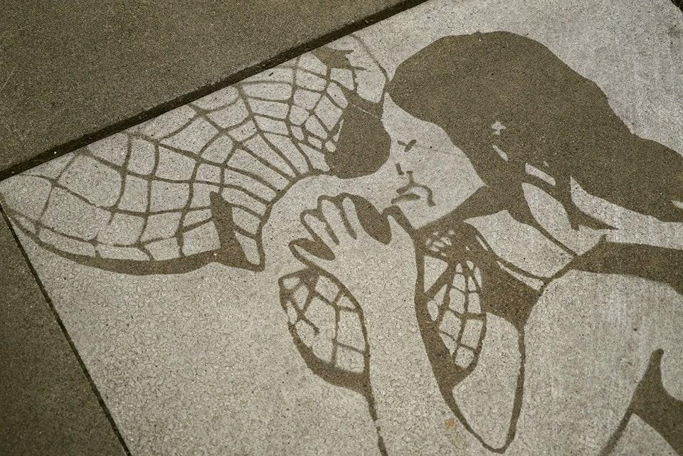 22228284 696405723889108 597207581074154270 n - Художник оставляет невидимые рисунки на асфальте. Узнать, что там скрывается, можно лишь после дождя