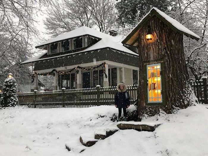 Женщина превратила 110-летнее мёртвое дерево в маленькую библиотеку, восхитив соседей и вообще всех 2