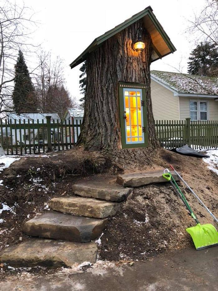 Женщина превратила 110-летнее мёртвое дерево в маленькую библиотеку, восхитив соседей и вообще всех 9