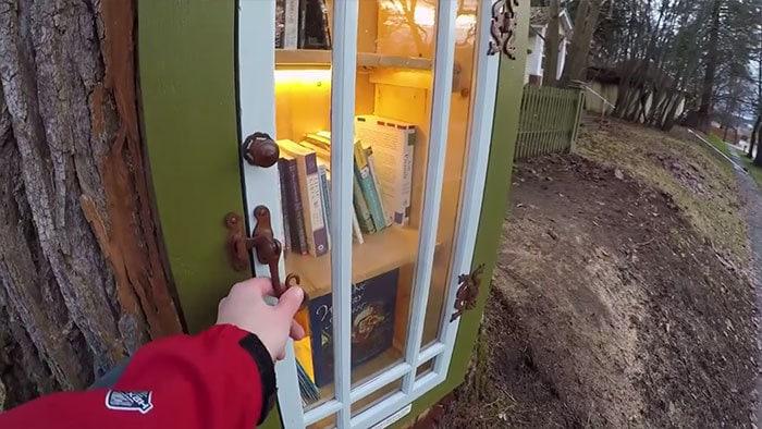 Женщина превратила 110-летнее мёртвое дерево в маленькую библиотеку, восхитив соседей и вообще всех 4