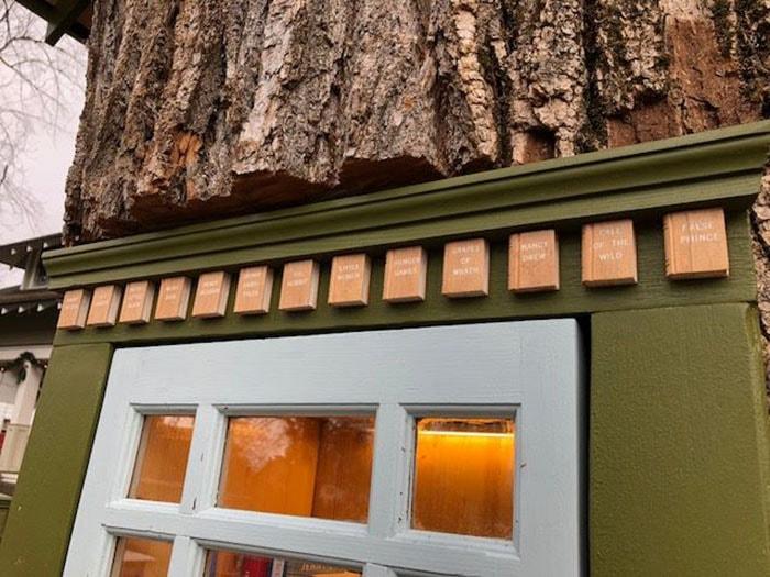 Женщина превратила 110-летнее мёртвое дерево в маленькую библиотеку, восхитив соседей и вообще всех 7