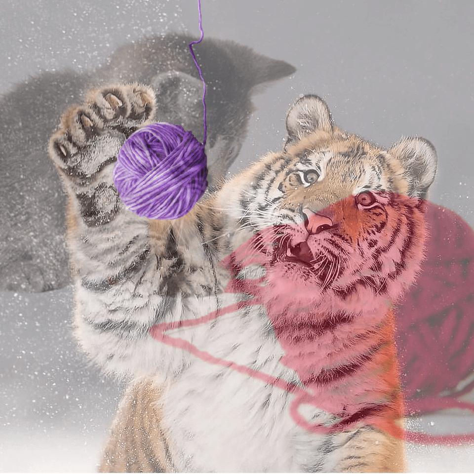 Тигр так игрался в снегу, что стал героем битвы фотошоперов. Ведь его морда хороша не только в лесу 13