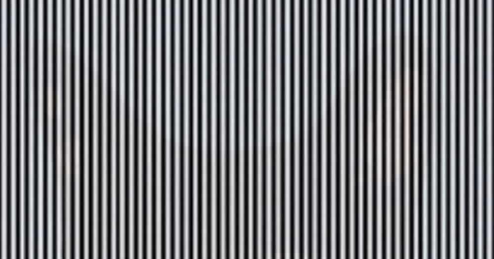 В сети появилась новая оптическая иллюзия. Чтобы понять, в чём фишка, нужно помотать головой