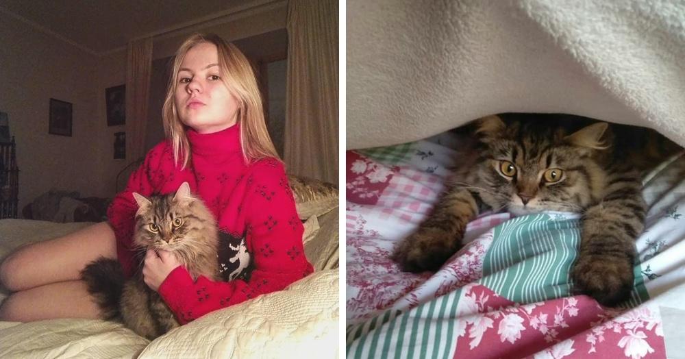 Девушка перечислила причины, по которым её кот на неё обиделся. Оказалось, дети ведут себя так же