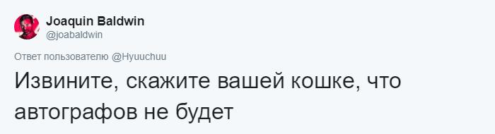 bez nazvaniya 10 12 - Хозяин обработал мяуканье своего кота, который орал всё утро. И этот трек грозится стать хитом
