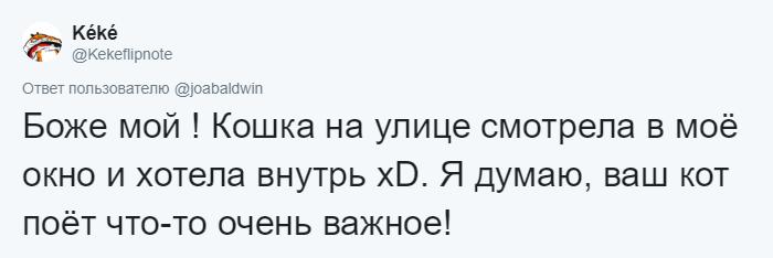 bez nazvaniya 13 10 - Хозяин обработал мяуканье своего кота, который орал всё утро. И этот трек грозится стать хитом