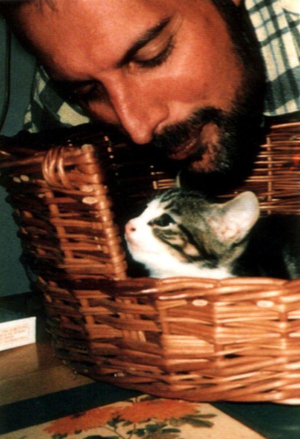 15 фотодоказательств того, что на свете есть один настоящий котолюб — и это Фредди Меркьюри 11