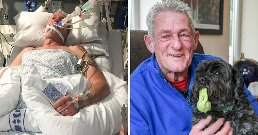 Пёс вывел своего 65-летнего хозяина из комы одним лишь лаем. Теперь он лечит и других пациентов