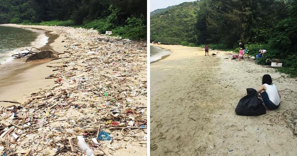 15 снимков до и после уборки на улице, от которых даже у отъявленного грязнули зачешется совесть