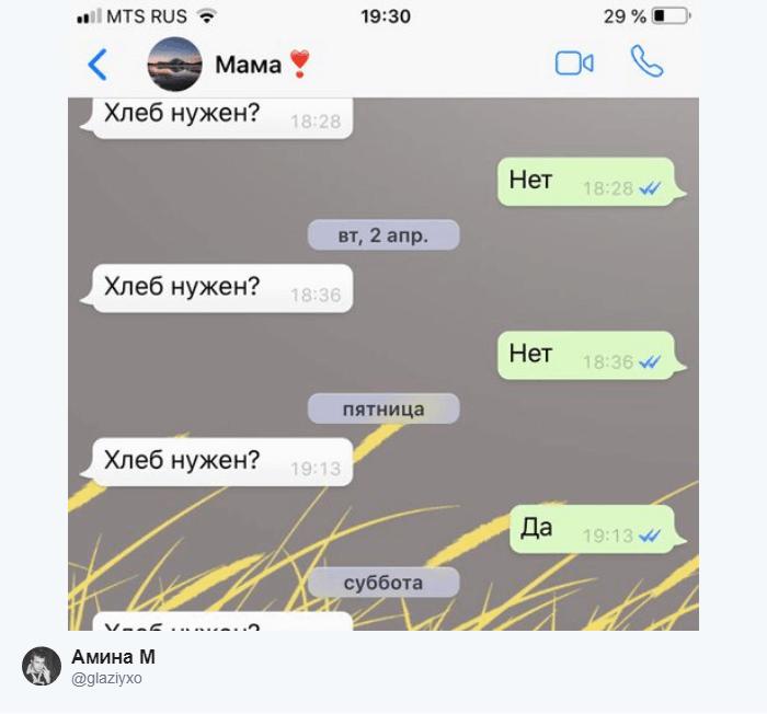 16 1 - «Ок. Хлеб нужен? Ок»: Пользователи Твиттера показывают скрины своего общения с родителями по СМС
