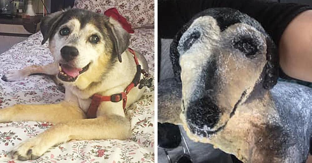 Мама хотела порадовать дочь, сделав скульптуру в виде её пса, а получилось… то, что получилось