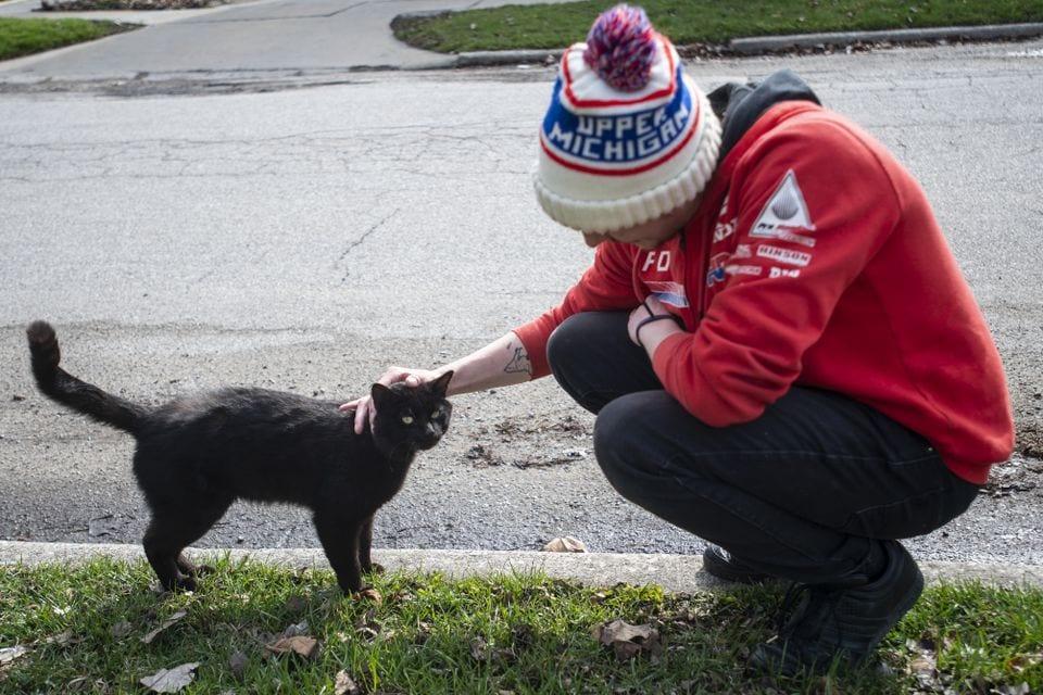 7tjh2psubfcdzmxmwbtwftiexm - «Кладбище домашних животных» в реальном мире: парень похоронил кота, а утром тот вернулся домой