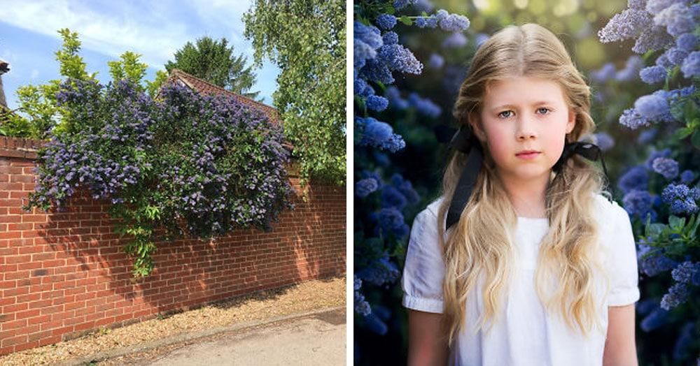 Фотограф из Британии доказала, что и в скучной повседневной локации можно сделать шикарный кадр