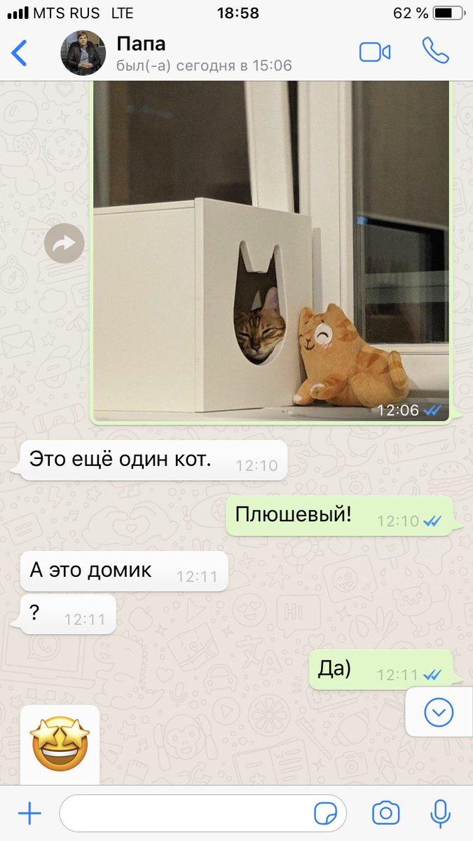 d3zbincxkaaic8o - «Ок. Хлеб нужен? Ок»: Пользователи Твиттера показывают скрины своего общения с родителями по СМС