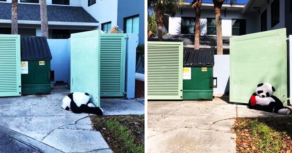 Эта панда была выброшена в мусорку, но неравнодушные люди спасли её и даже помогли завести Инстаграм