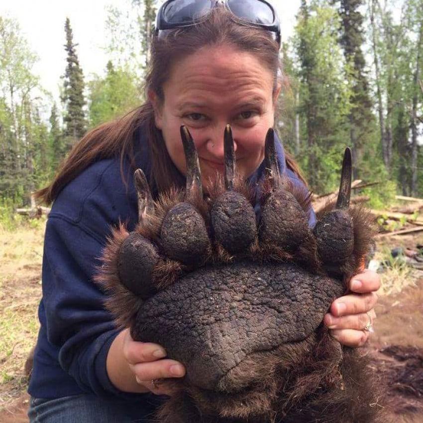 10  17 - 18 фотографий животных, которые на своём примере показывают, что размеры познаются в сравнении
