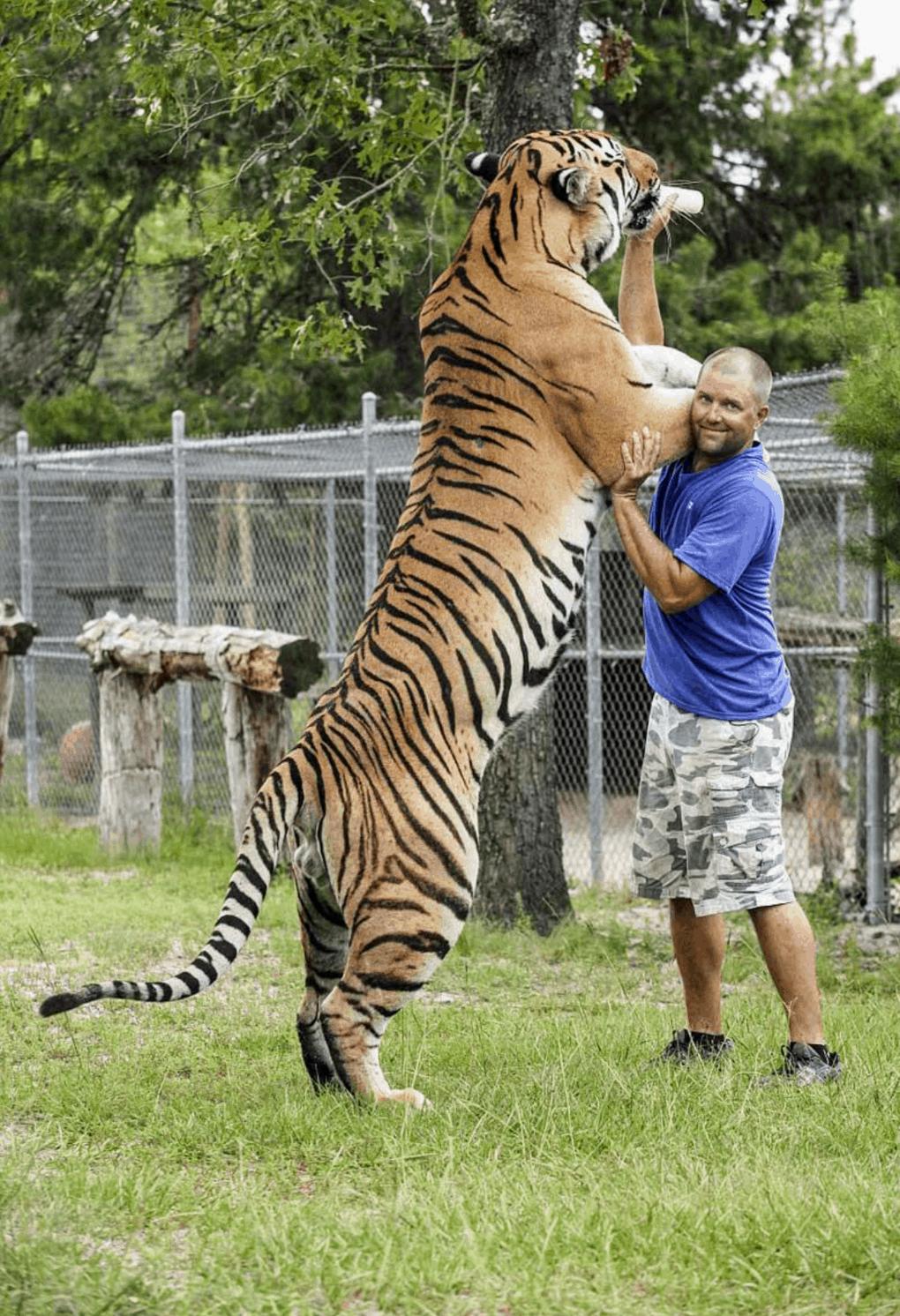 ps4g7x6ukgp21 1 - 18 фотографий животных, которые на своём примере показывают, что размеры познаются в сравнении