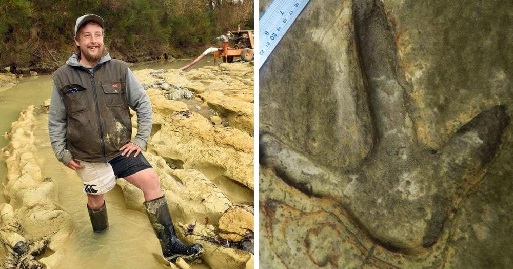 Мужчина гулял с собаками и заметил в реке огромные птичьи следы, которые скрывались там миллионы лет