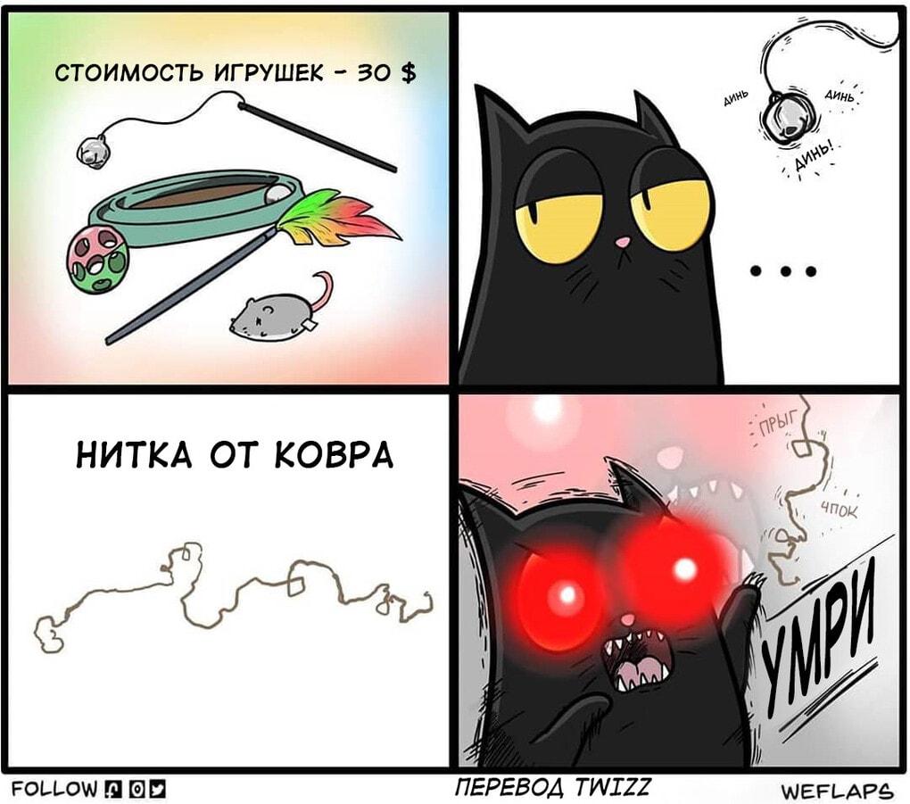 13 2 - 19 комиксов, которые демонстрируют, что жизнь с котом — это отдельная профессия