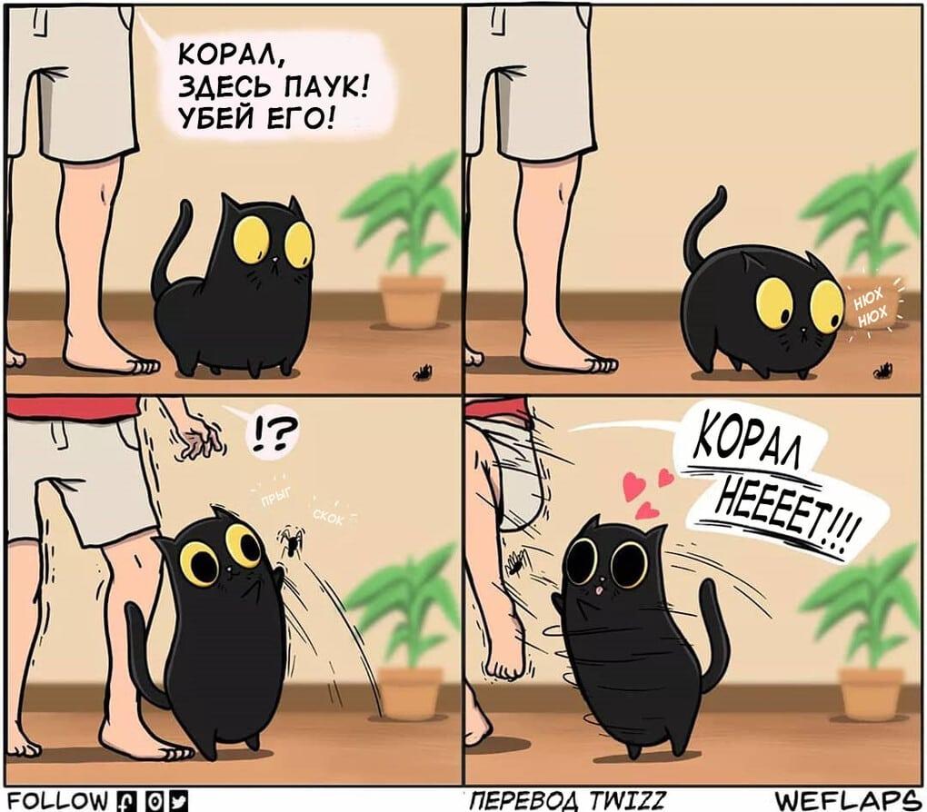 14 1 - 19 комиксов, которые демонстрируют, что жизнь с котом — это отдельная профессия