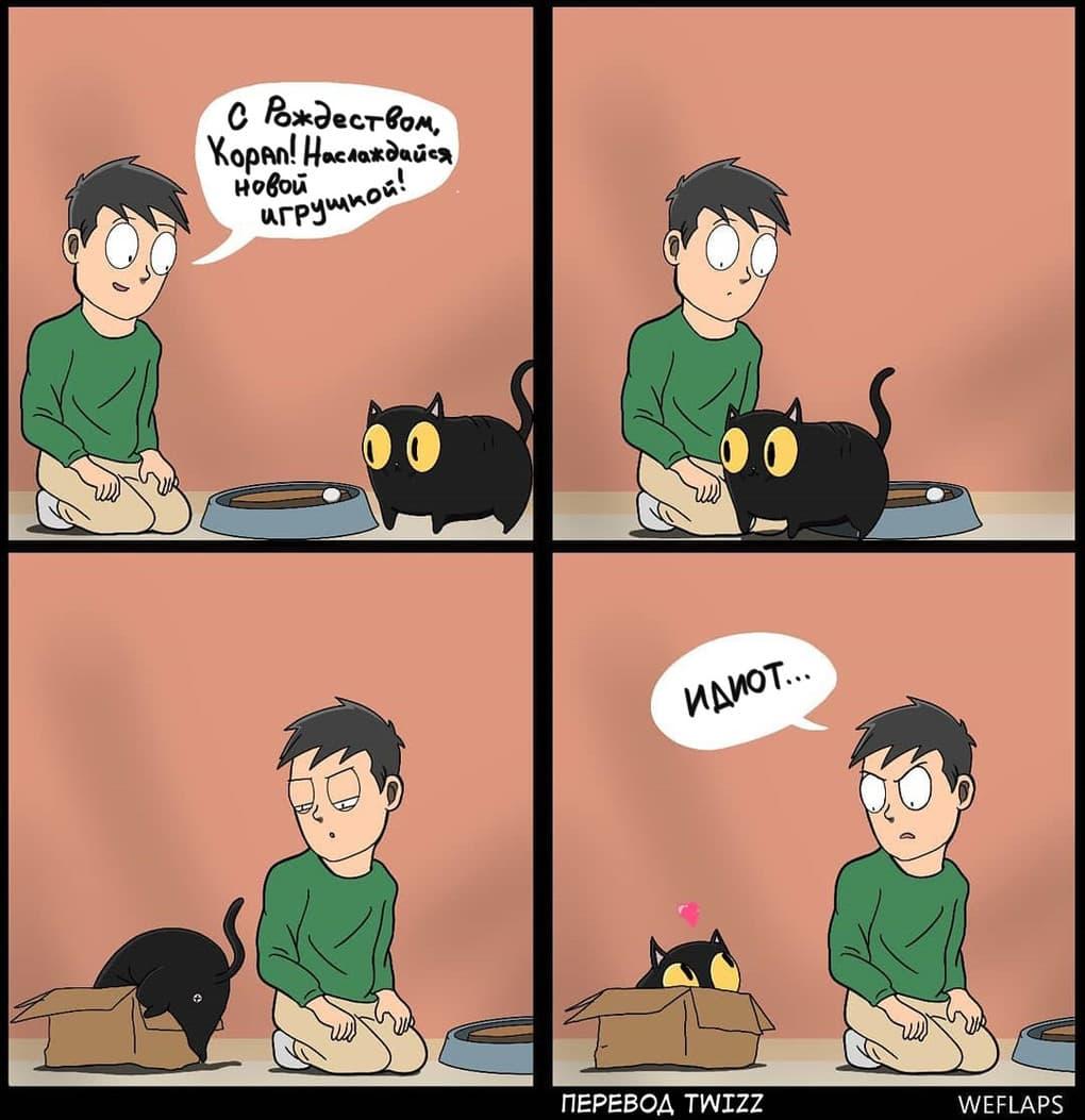 16 - 19 комиксов, которые демонстрируют, что жизнь с котом — это отдельная профессия