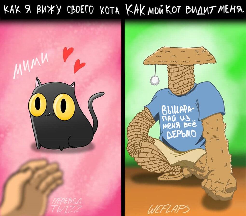 2 8 - 19 комиксов, которые демонстрируют, что жизнь с котом — это отдельная профессия
