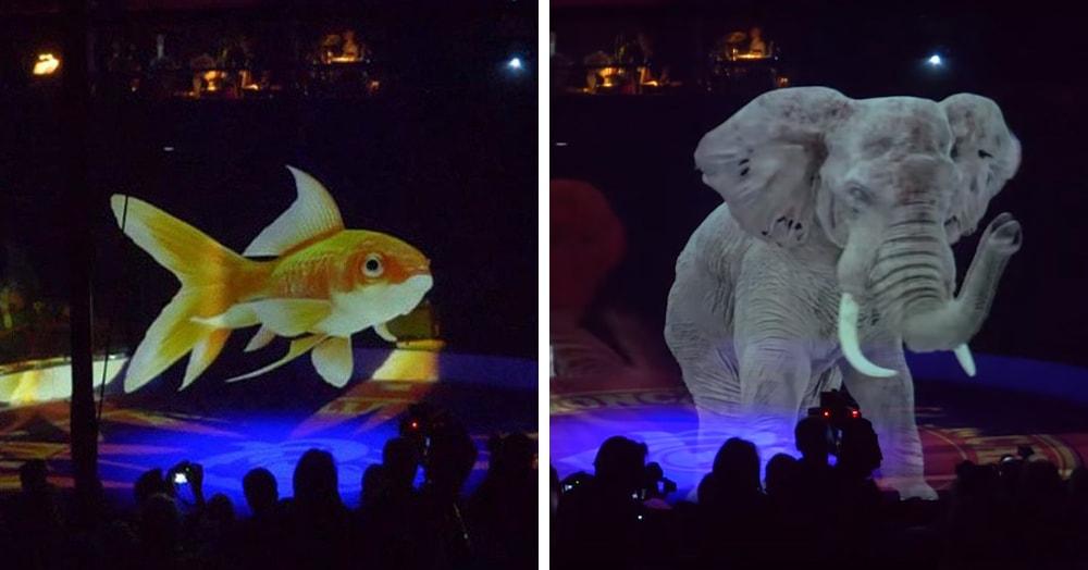 Немецкий цирк нашёл красивое решение проблемы эксплуатации животных. Вместо них выступали голограммы