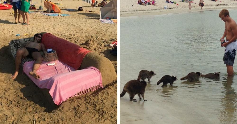 17 фотографий странных и забавных вещей, которые люди замечали на пляжах