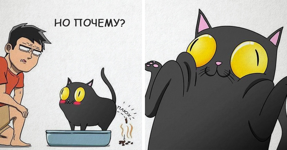 19 комиксов, которые демонстрируют, что жизнь с котом — это отдельная профессия