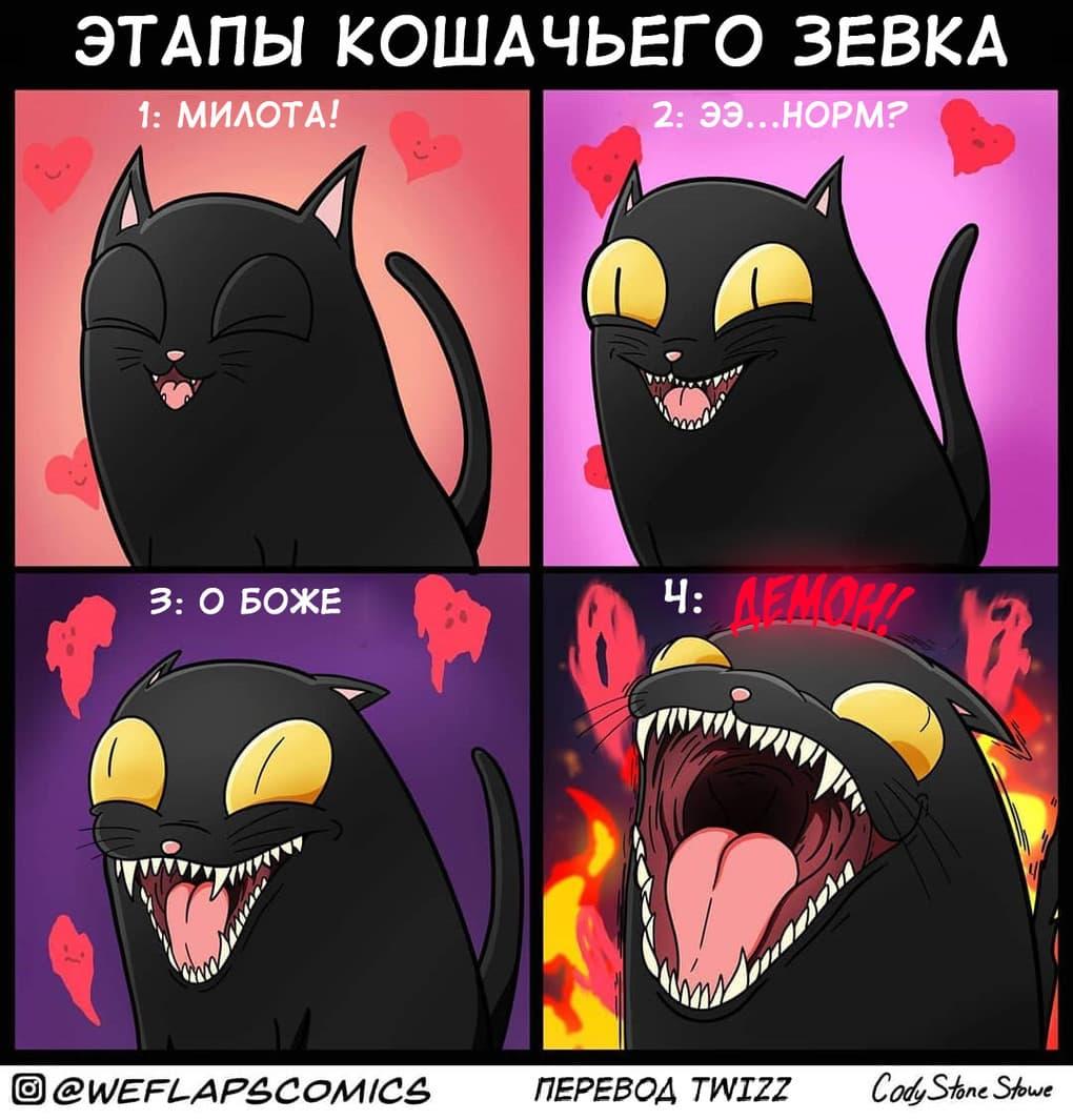 6 2 - 19 комиксов, которые демонстрируют, что жизнь с котом — это отдельная профессия