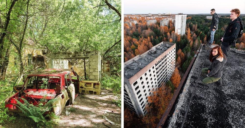 20 фотографий из Чернобыля, которые показывают, как природа восстанавливает заражённую землю