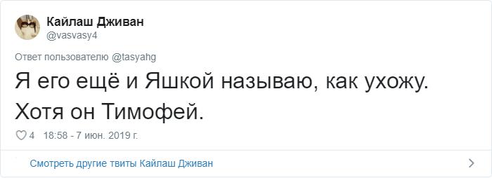 bez nazvaniya 13 2 - «Охраняй. Котов домой не води»: люди рассказывают, что говорят своим питомцам перед уходом из дома