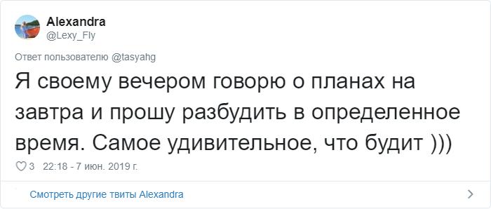 bez nazvaniya 14 2 - «Охраняй. Котов домой не води»: люди рассказывают, что говорят своим питомцам перед уходом из дома