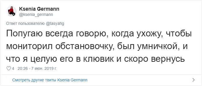 bez nazvaniya 18 2 - «Охраняй. Котов домой не води»: люди рассказывают, что говорят своим питомцам перед уходом из дома
