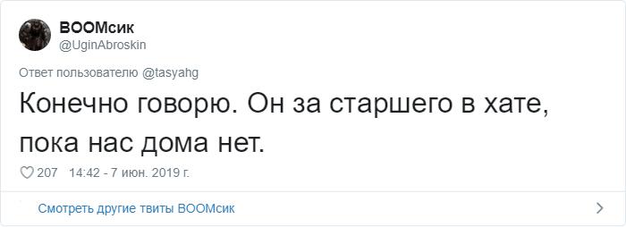 bez nazvaniya 2 4 - «Охраняй. Котов домой не води»: люди рассказывают, что говорят своим питомцам перед уходом из дома