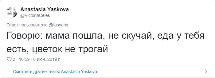 bez nazvaniya 22 2 - «Охраняй. Котов домой не води»: люди рассказывают, что говорят своим питомцам перед уходом из дома