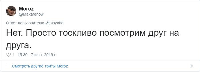 bez nazvaniya 25 2 - «Охраняй. Котов домой не води»: люди рассказывают, что говорят своим питомцам перед уходом из дома