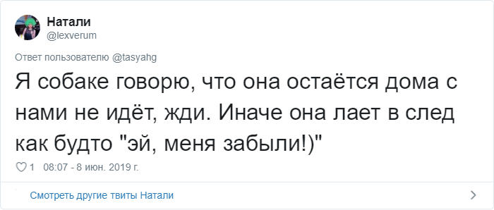 bez nazvaniya 28 2 - «Охраняй. Котов домой не води»: люди рассказывают, что говорят своим питомцам перед уходом из дома