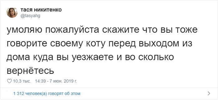 bez nazvaniya 32 1 - «Охраняй. Котов домой не води»: люди рассказывают, что говорят своим питомцам перед уходом из дома