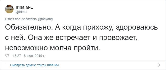 bez nazvaniya 33 - «Охраняй. Котов домой не води»: люди рассказывают, что говорят своим питомцам перед уходом из дома