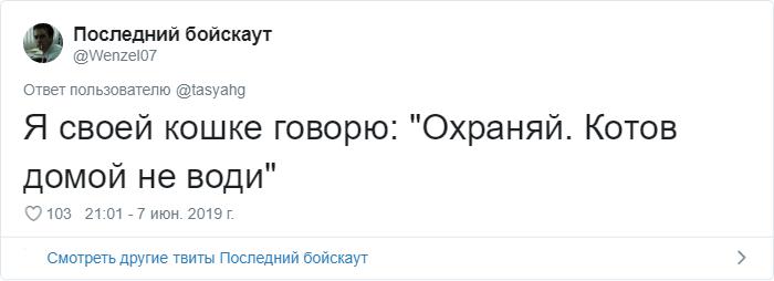 bez nazvaniya 38 - «Охраняй. Котов домой не води»: люди рассказывают, что говорят своим питомцам перед уходом из дома
