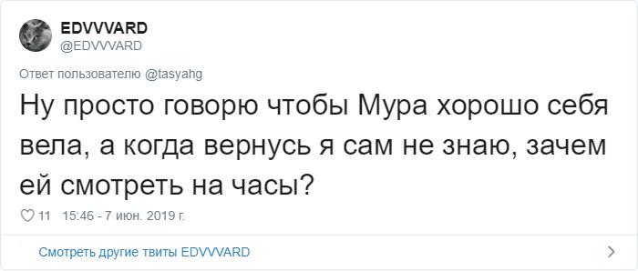 bez nazvaniya 7 3 - «Охраняй. Котов домой не води»: люди рассказывают, что говорят своим питомцам перед уходом из дома