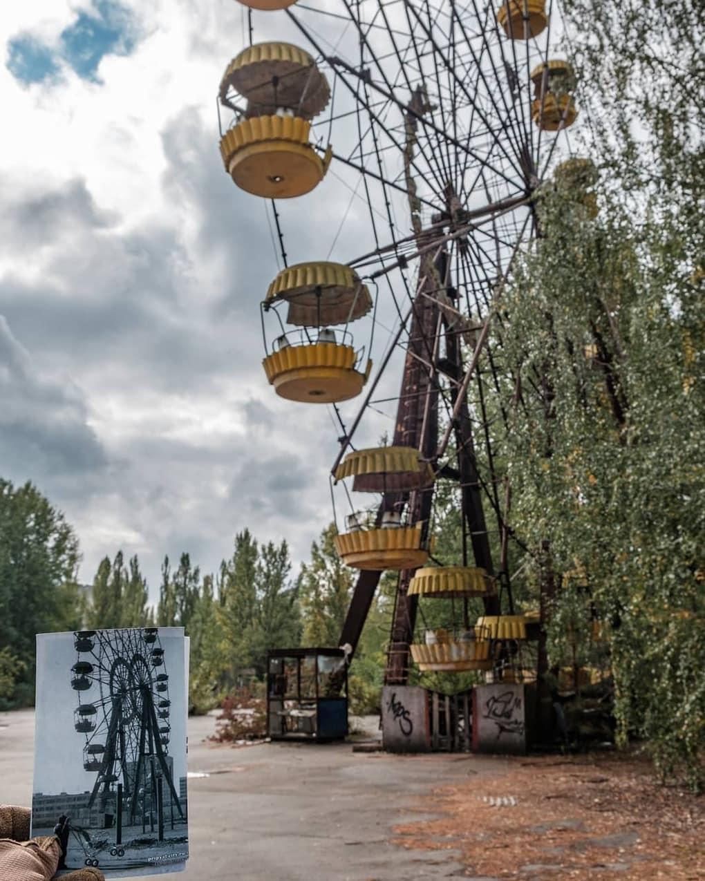 chernobyl 1986 64413642 437843180382800 8041995061271268766 n - 20 фотографий из Чернобыля, которые показывают, как природа восстанавливает заражённую землю
